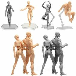 2Colors Drawing Figures For Artists Action Figure Model Mann