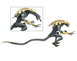 "Aliens vs Predator  - 7"" Scale Action Figure - Chrysalis - N"