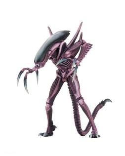 "Aliens vs Predator  - 7"" Scale Action Figure - Razor Claws -"