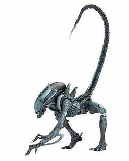 "Aliens vs Predator  - 7"" Scale Action Figure - Arachnoid - N"