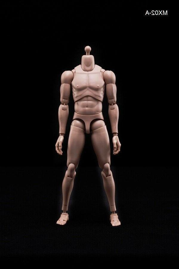 Model Toy Muscle Flexible for MX02-A