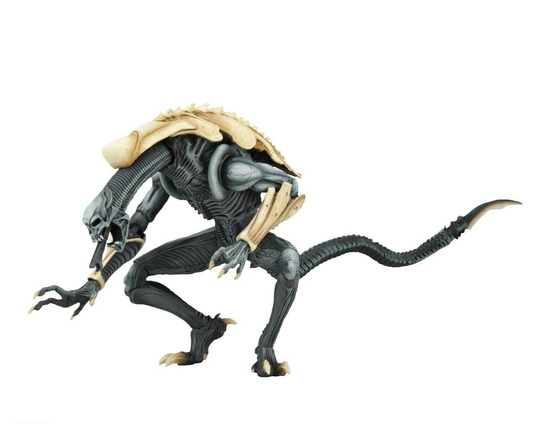 """Aliens 7"""" Scale - Chrysalis NECA"""