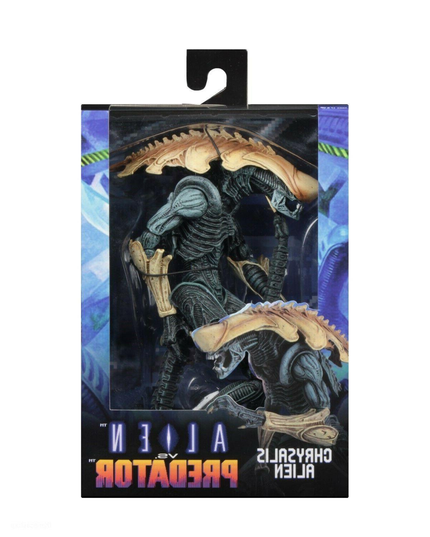 "Aliens vs Predator - 7"" Scale Action - Chrysalis"