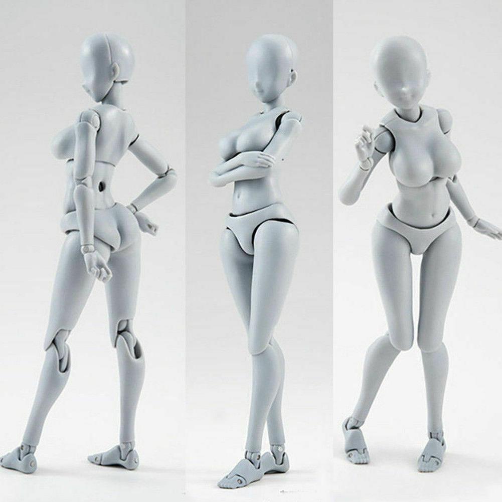 Body Kun Figure Model Human Woman