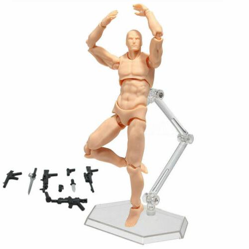 Male/Female Action Doll Human Body