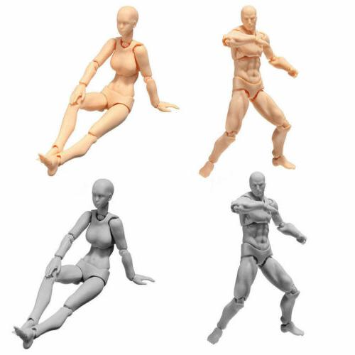 Male/Female Action Model Doll For