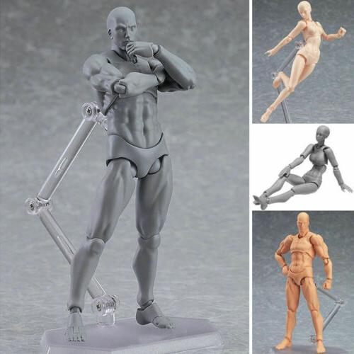 Male/Female Action Doll Human Body Toy For Anime Painting
