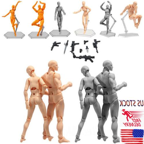 Male Female PVC Action Figma Archetype Figure Body Toy Art A