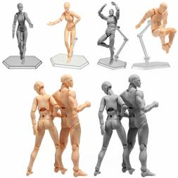 Male/Female Action Figure Model Doll Human Body Toy For Anim