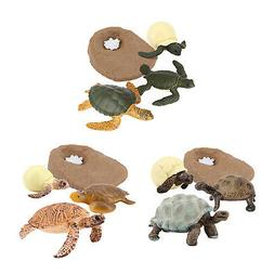 Plastic Nature Turtle Life Cycle Figure Learning Biology Toy
