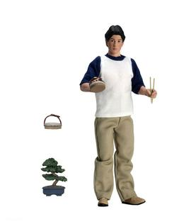 """The Karate Kid - 8"""" Clothed Action Figures - Daniel -NECA"""