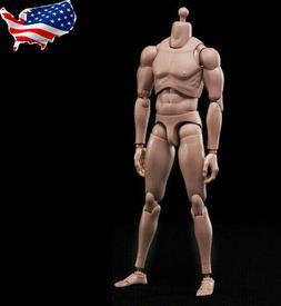 US 1/6 Male Figure Body Model Toy Standard Muscle Flexible F