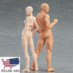 """US Male Female PVC Body Model Youth Version 2.0 CHAN KUN 5"""""""